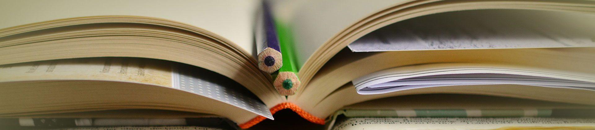 החוג לחינוך מרחב פדגוגיה ותכנון לימודים