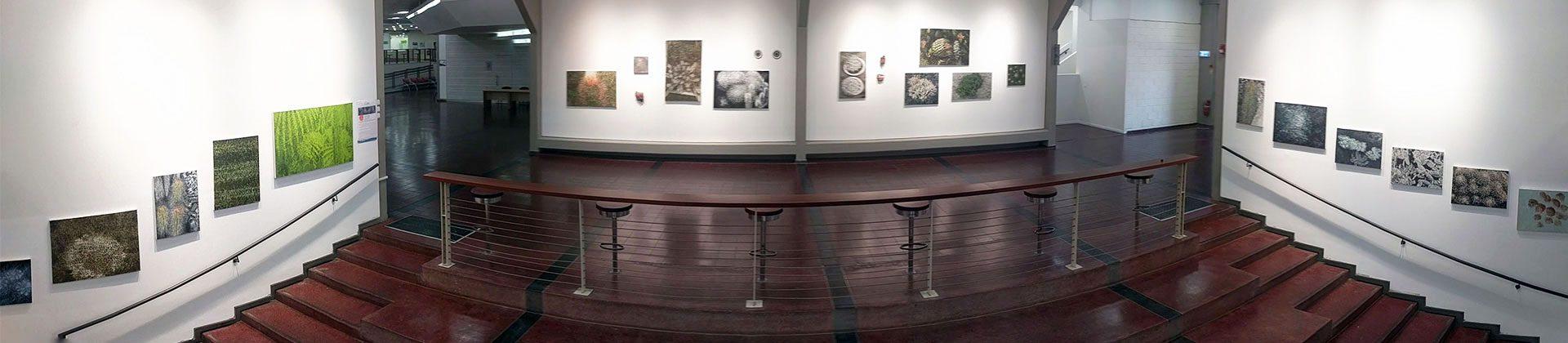 סדרת תערוכות ושיח גלריה לשנת תש
